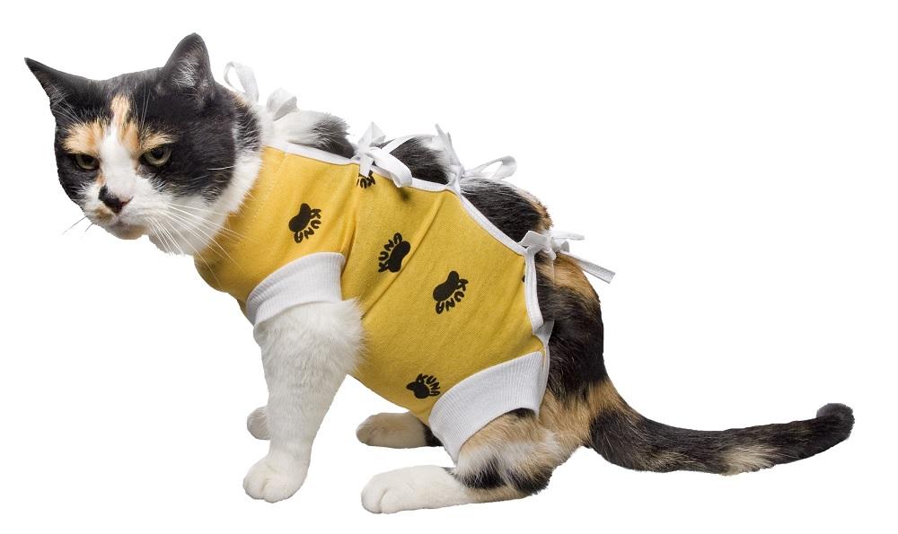 Fartuszek ubranko pooperacyjne dla psa kota S