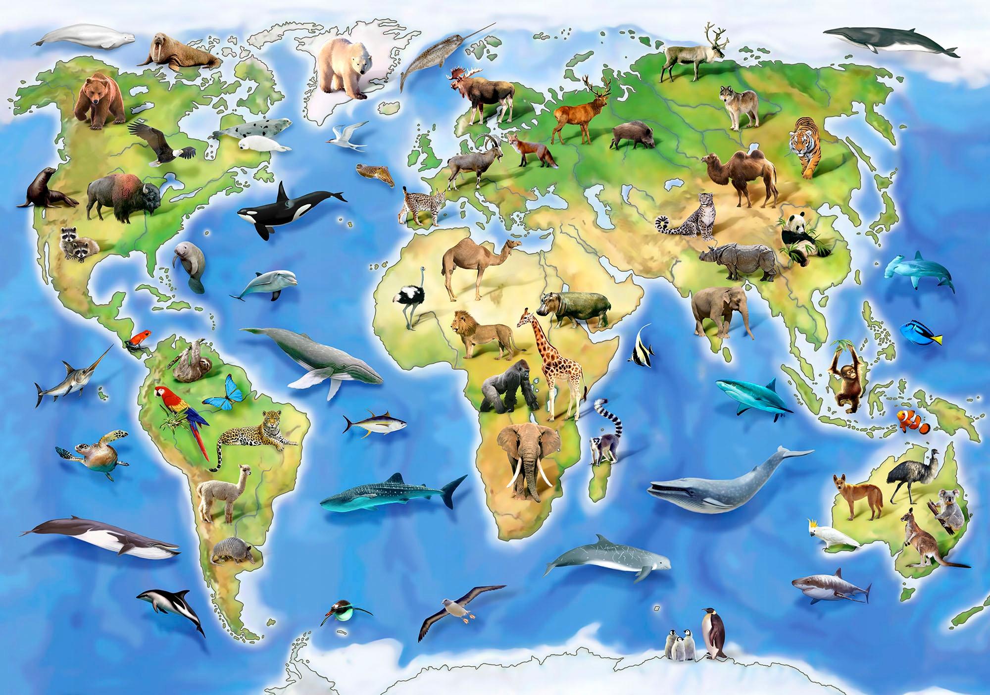 карта россии с картинками животных