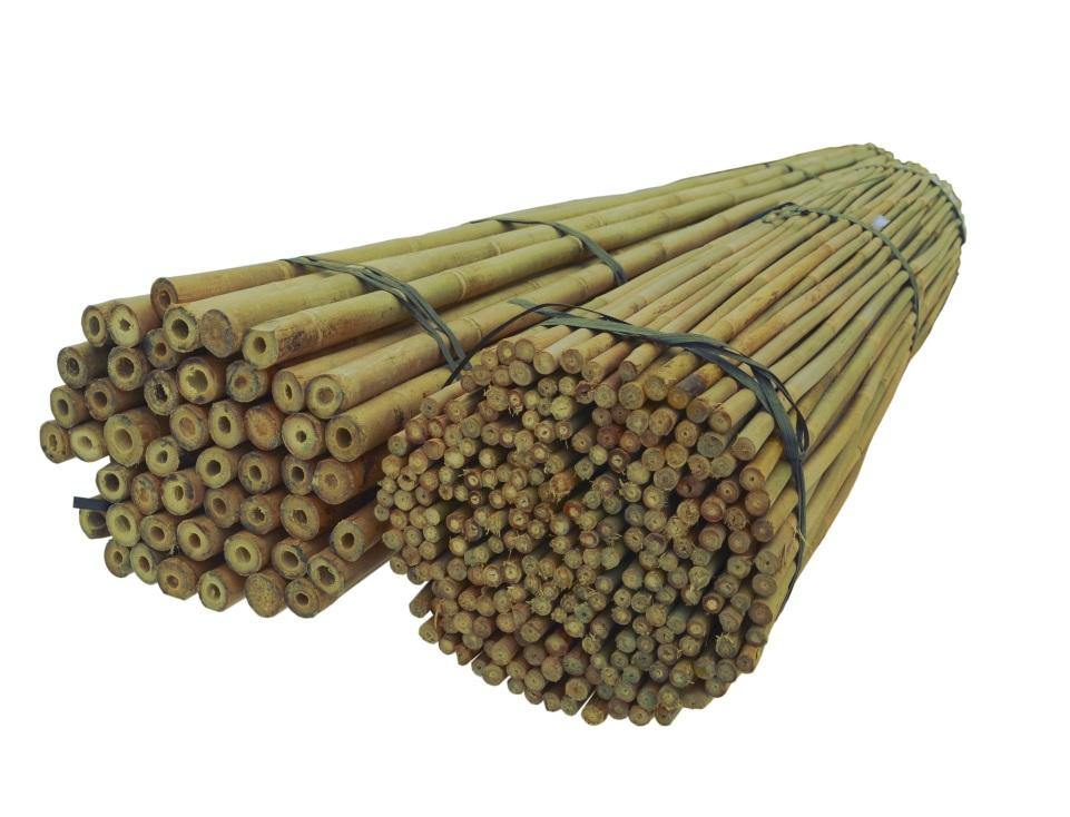 BAMBUSOVÉ TYČE 240 cm, 24/26 mm /30 Ks, bambus