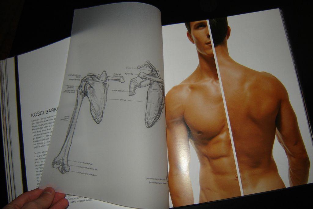 Dorable Anatomía Sarah Simblet Motivo - Anatomía de Las Imágenesdel ...