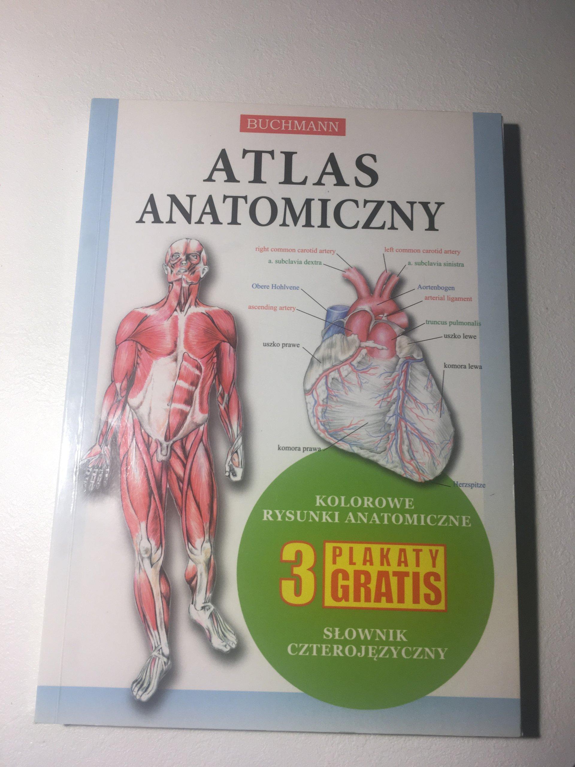 Atlas Anatomiczny Buchmann 7226873823 Oficjalne Archiwum
