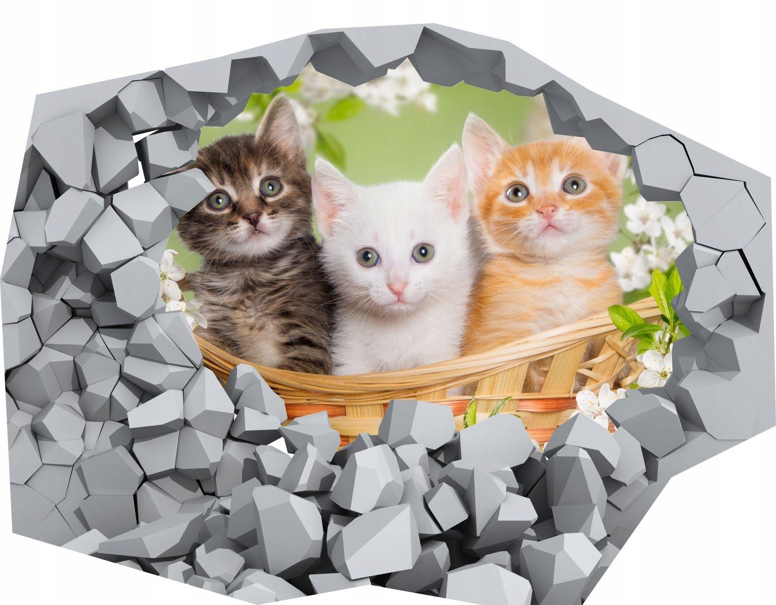 Naklejka Tapeta Samoprzylepna Zwierzęta Koty Pies 6964395407