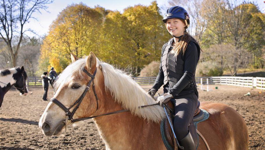 a7bcb842c8179 Trening wzmacniający dla miłośników jazdy konnej - Allegro.pl
