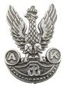 Przypinka z orłem Armii Krajowej piękny do czapek