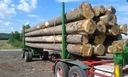Drewno tartaczne: sosna, jodła, świerk, dąb