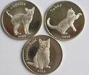 STROMA zestaw 3 kotów