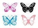 Naklejka na auto Motyl Motyle Motylki WZORY
