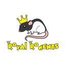 Szczur mrożony 250/300g 10szt WYSYŁKA