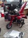 298D1 Einhell GC-MT 1636 - glebogryzarka spalinowa