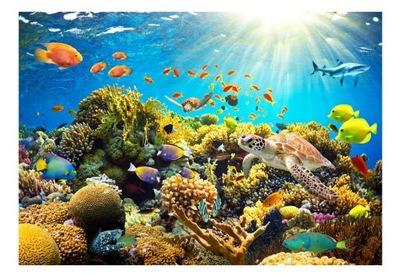 Настенные фрески 3D для детей аквариум 350x245