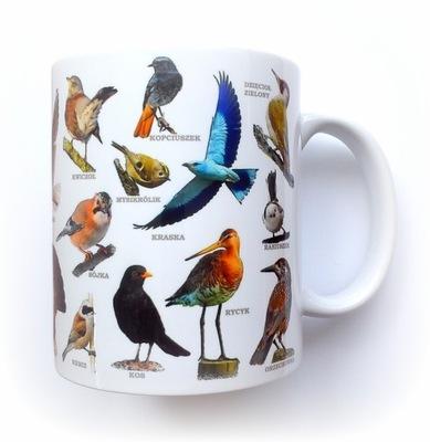 Птицы в Польше - Кружка с птицами