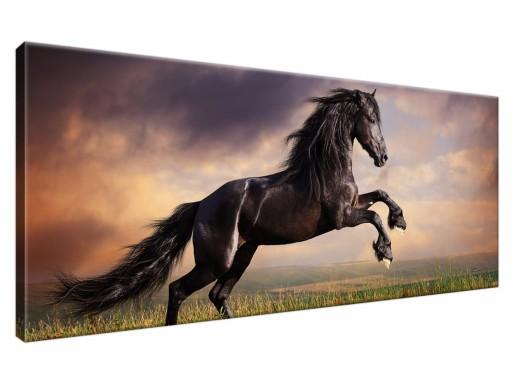 Obraz Konie 100x40 Obrazy Koń Konia 1149 6574496058 Allegropl