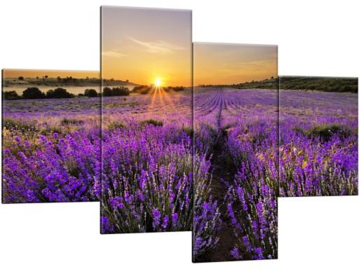 Obrazy Tryptyki 120x80 Lawenda Wrzosy Do Sypialni 6587355685