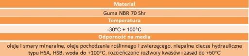 Uszczelniacz simering 25x52x8 RST NBR ERIKS